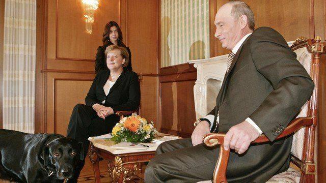 Washington Times: Лабрадор Кони сунула нос в германо-российские отношения