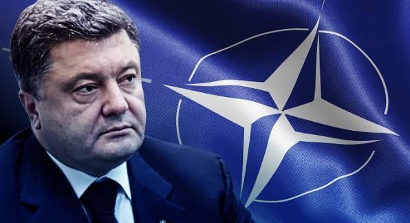 Неожиданно: НАТО требует от Украины начинать переговоры с ДНР и ЛНР