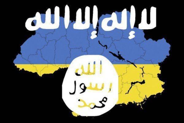 Боевики ИГИЛ скрываются на юге Украины