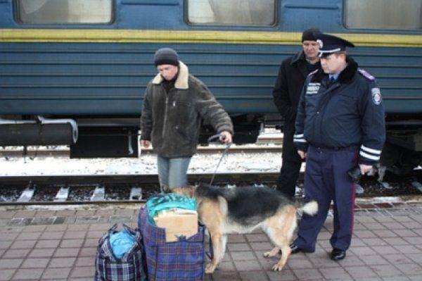 Вооруженные силовики в камуфляже шмонают киевлян и требуют аусвайсы