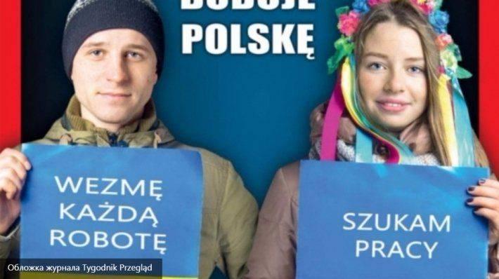 Ищу работу: польский журнал посмеялся над украинскими гастарбайтерами