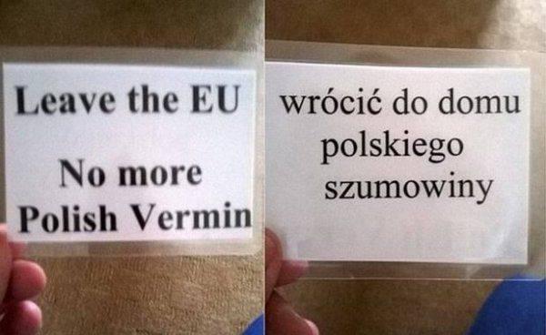За что в Британии массово избивают поляков?