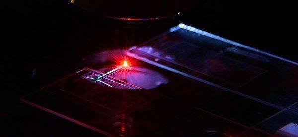 Создан лазер на основе человеческой крови