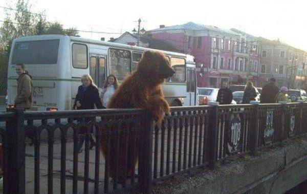 За что ненавидят Русского Медведя?