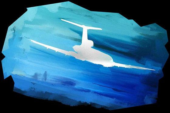 Опубликован разбор всех версий крушения Ту-154 в Сочи