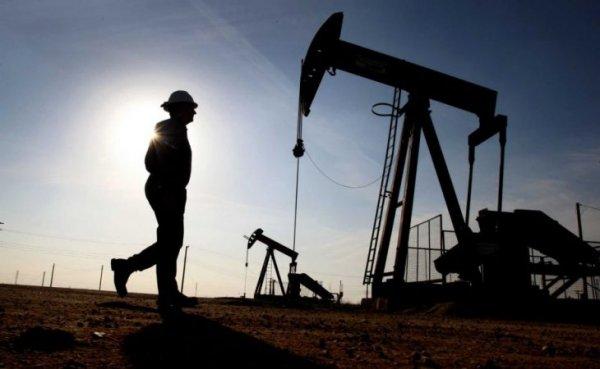 Нефтяной прогресс: Россия увеличила экспорт «черного золота» в Индию