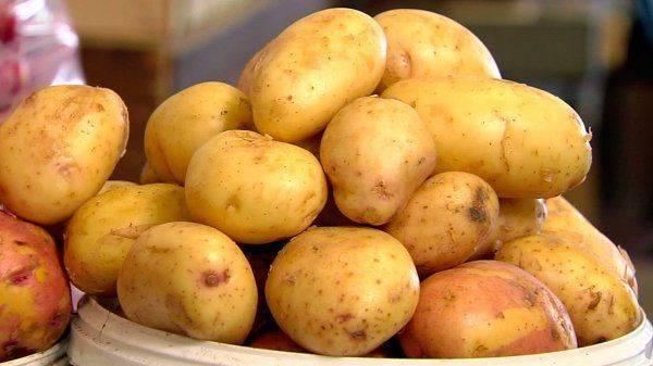 Нищета заставляет жителей Украины заменять мясо картошкой: Продукты стремительно дорожают
