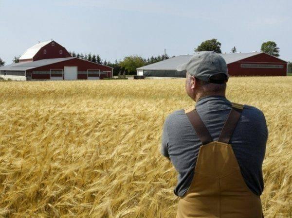 Аграрная колония: что на самом деле значит интеграция Украины с ЕС