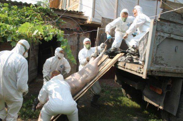 Зачем США превращают Украину в биологическую бомбу