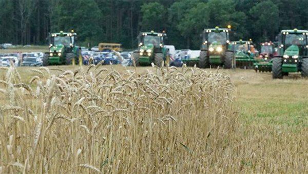 Рекордный урожай пшеницы в России угрожает фермерам США