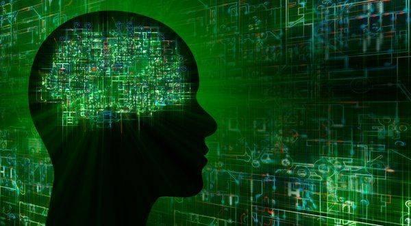 В России разработана уникальная «нейробалалайка» для передачи мыслей