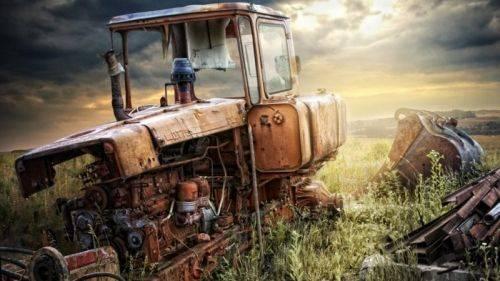 Перспективы «аграрной сверхдержавы»: сокращение поголовья скота, дефицит натуральных продуктов и разорение сельских домохозяйств