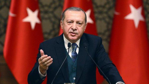 Эрдоган обсудил с премьером Великобритании операцию Турции в сирийском Африне