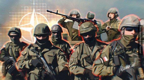НАТО осенью проведет масштабные совместные учения у границ России