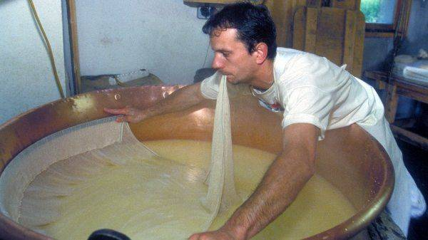 Суррогат с дырками: Дорогой сырный фальсификат захватил рынок России