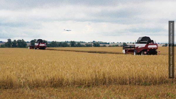 Россия имеет возможность предложить иные схемы поставок зерна партнерам за границу