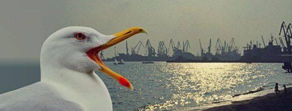 Следующим Украина потеряет Азовское море