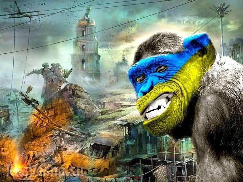 Украина быстро превращается в бандитское государство