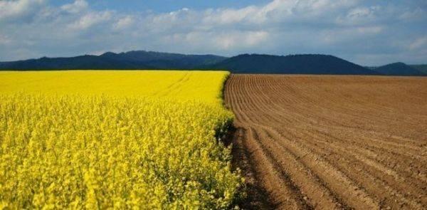 Украина готовится раздавать территории в обмен на кредиты