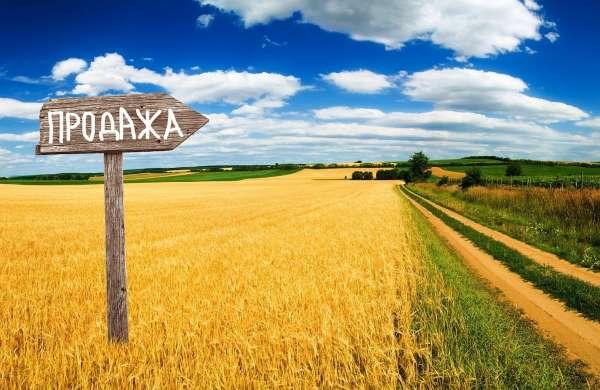 Открытый рынок земли и последствия для Украины
